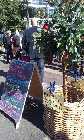 Growers Markets Pyrmont - photo 12