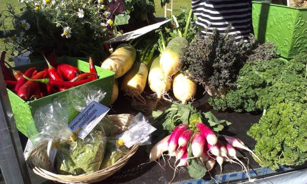 Growers Markets Pyrmont - photo 21