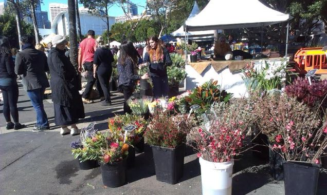 Growers Markets Pyrmont - photo 24
