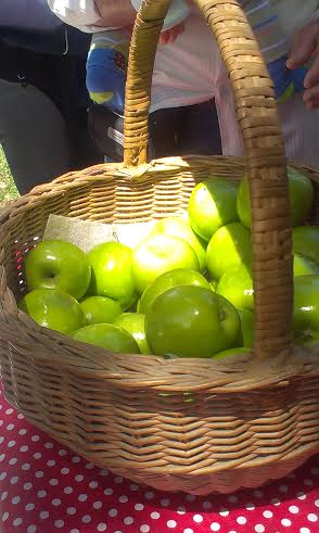 Granny Smith Festival - photo 20
