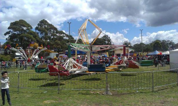 Granny Smith Festival - photo 8